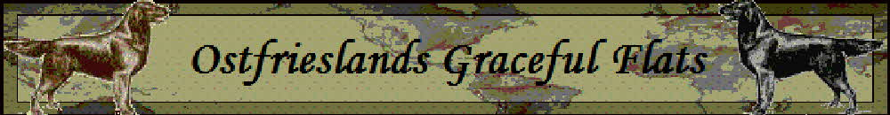 Ostfrieslands_Graceful_Flats_NBanner2